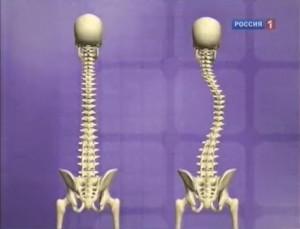 Помогает ли нам ортопедический матрац?