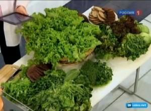 Для чего в кафе и ресторанах украшают блюда листовым салатом.