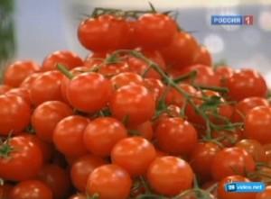 Почему помидоры черри продлевают молодость.