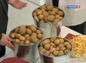 Доказано: от картошки не толстеют.