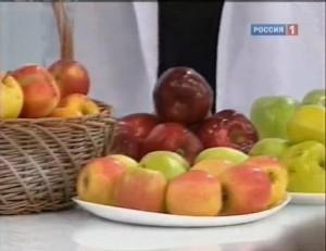 Отчего у нас возникает аллергия на яблоки?