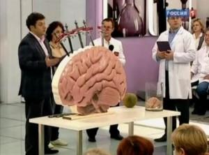 Сотрясение мозга. Последствия