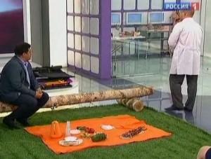 Как выбрать стул для пикника