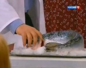 Рыба в карамели