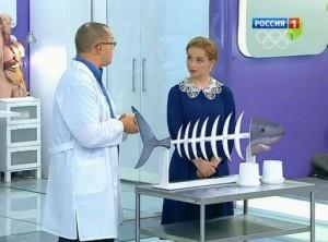Эффективны ли препараты с акульим хрящом