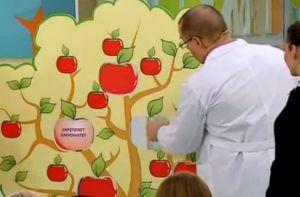 Какие яблоки полезней
