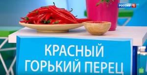 Чем полезны горькие продукты? фото